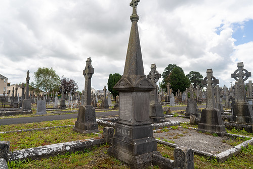 MOUNT ST. LAWRENCE CEMETERY IN LIMERICK [I USED A BATIS 25mm LENS]-153078