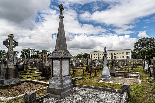 MOUNT ST. LAWRENCE CEMETERY IN LIMERICK [I USED A BATIS 25mm LENS]-153075