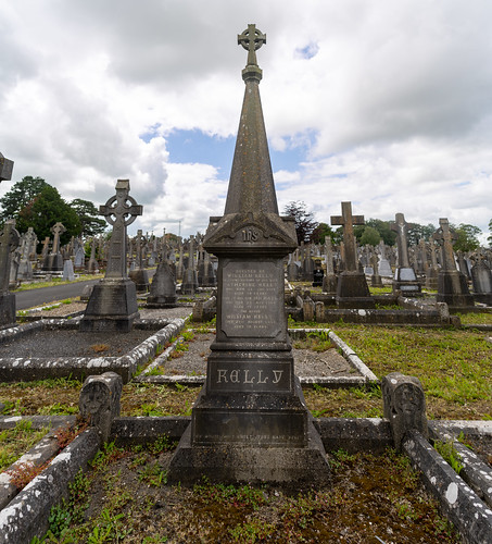 MOUNT ST. LAWRENCE CEMETERY IN LIMERICK [I USED A BATIS 25mm LENS]-153074