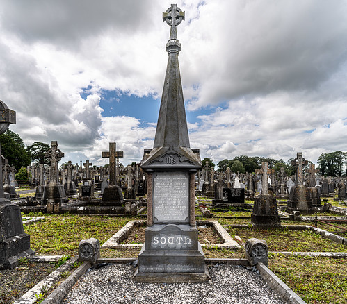 MOUNT ST. LAWRENCE CEMETERY IN LIMERICK [I USED A BATIS 25mm LENS]-153076