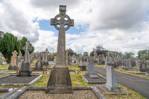 MOUNT ST. LAWRENCE CEMETERY IN LIMERICK [I USED A BATIS 25mm LENS]-153073