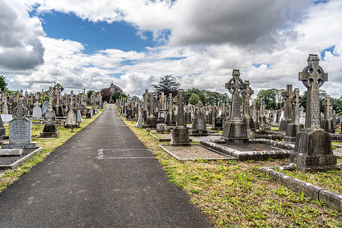 MOUNT ST. LAWRENCE CEMETERY IN LIMERICK [I USED A BATIS 25mm LENS]-153072