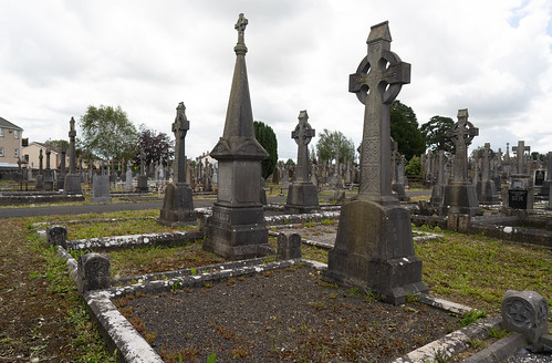 MOUNT ST. LAWRENCE CEMETERY IN LIMERICK [I USED A BATIS 25mm LENS]-153077