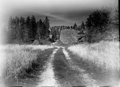 Big Bend Wildlife Area, Douglas County, Washington