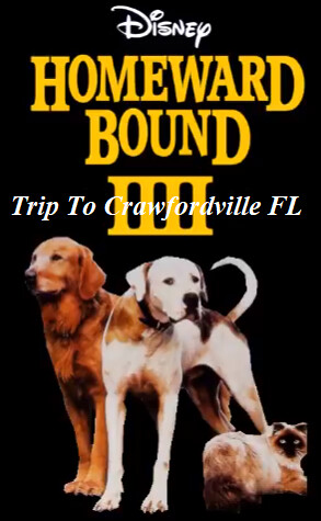 Homeward Bound 4 Trip To Crawfordville FL will become a last 4th film releasing on June 19, 2025