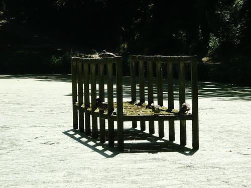 - Brücke - vergängliches Kunstwerk von Dani Karavan