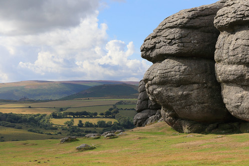 England / Devon - Dartmoor National Park