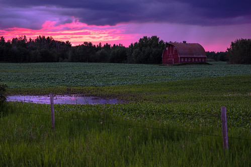 Red barn; New Sarepta area (Image 3)