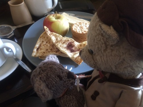 Paddington and Scout at the Garden of St Erth Cafe 2.