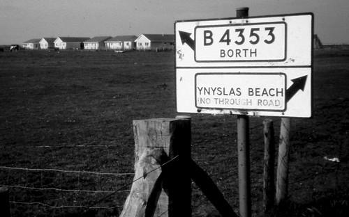 Tro Ynys-las, 1982