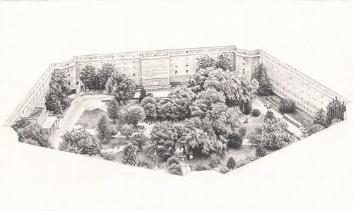 'In The Garden of Pentagon' by Antonio Carty