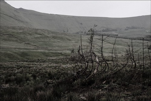 The Pursuit of Diarmuid and Grainne- pic 20