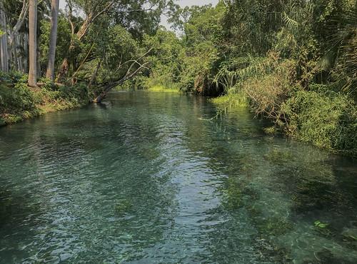 las estacas river