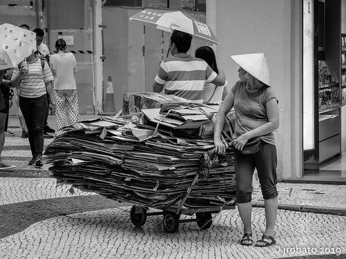 Carton Collector