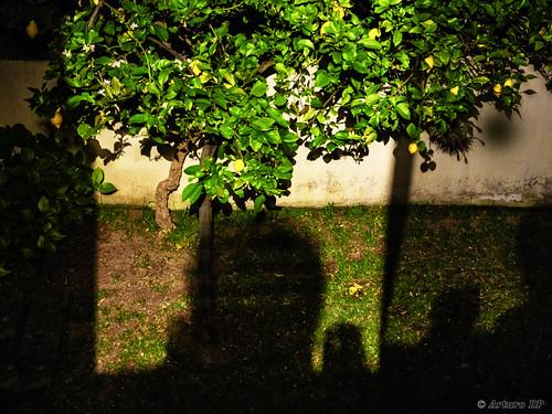 Luces y sombras en la noche (Lights and shadows at night)