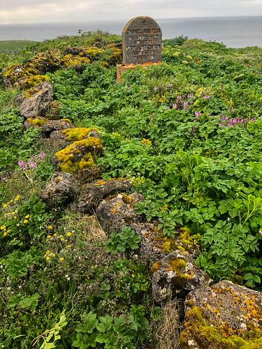 Grave on Hutchinson Hill_St Paul Island_AK-201906280001