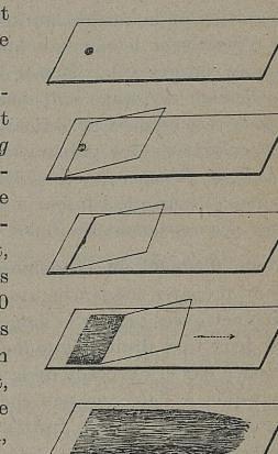 This image is taken from Le paludisme macédonien : caractères cliniques et hématologiques, principes de thérapeutique