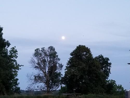 Our good ol' moon - 071419