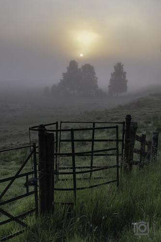 Summer sunrise at Advie