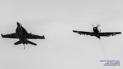 INCOMING EA-18G & A-1D IN MONOCHROME
