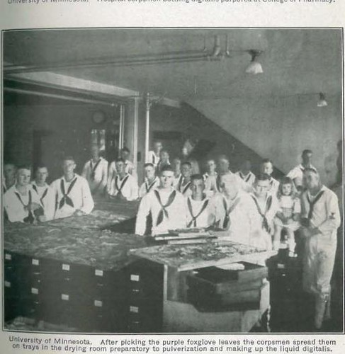 This image is taken from Hospital Corps Quarterly 8, January 1919