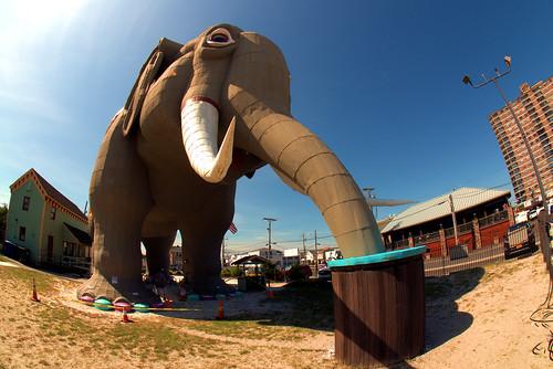 Lucy The Elephant The World's Greatest Elephant