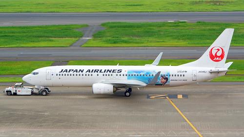 Boeing 737-846, JA346J, Japan Airlines (Natsuzora Livery)