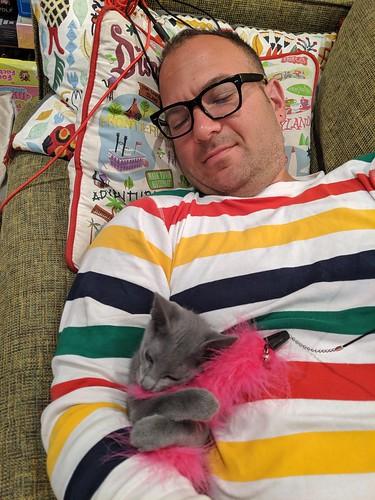Birthday morning cat cuddle with Warlock 2, home, Burbank, California, USA