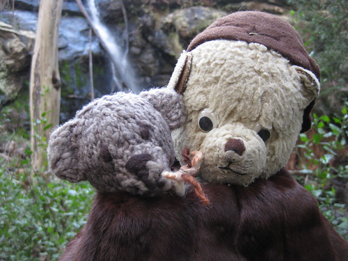Paddington and Scout at the Stanley Falls