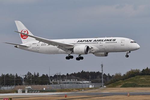 Boeing 787-8 'JA824J' Japan Air Lines