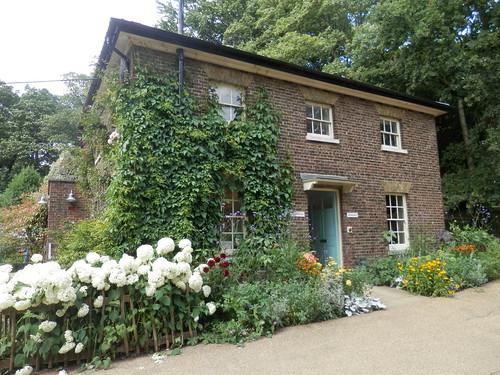 Garden shop, Kenwood