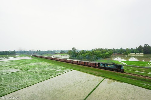 IZN YDM4 6531 racing past the waterlogged paddy fields!