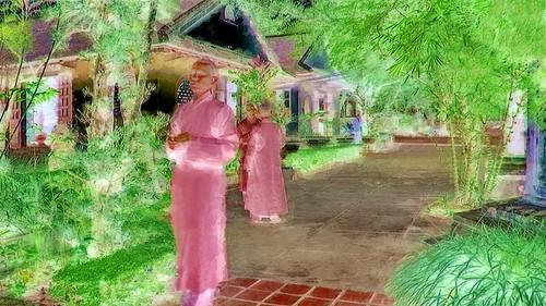 Vietnam - Hue - Tu Hieu Pagode - 75bb