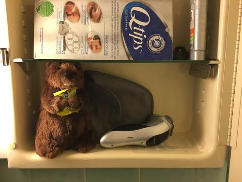 Beaver in Medicine Cabinet