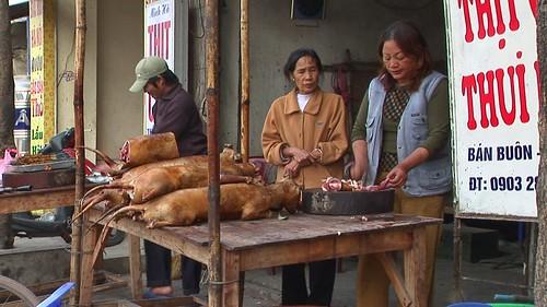 Vietnam - Hanoi - Dog Butchery - 18