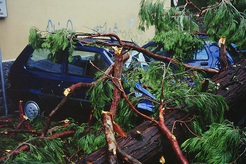 Uragano a Mercurago, Arona, luglio 2003