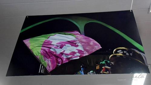 Mang Fei 190810 010 CMVR exposição carnaval 2019 foto Apoteose bateria ritmista