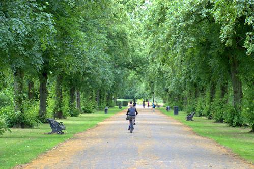 Walkway scene at Haslam Park in Preston