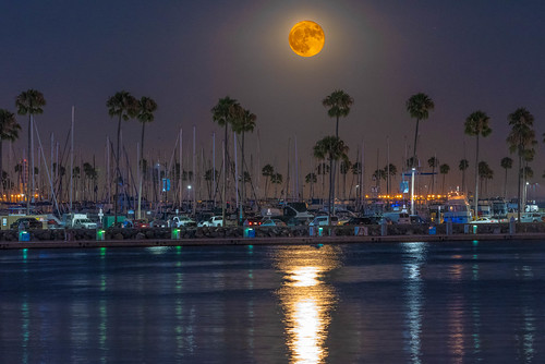 Orange Full Sturgeon Moonrise Over Shoreline Village