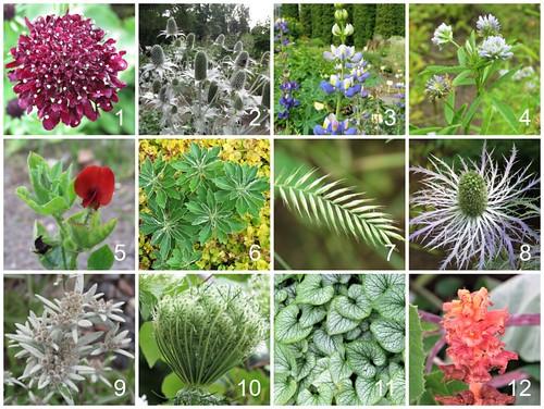 Tarton yliopiston kasvitieteellinen puutarha   Tartu University Botanical Garden