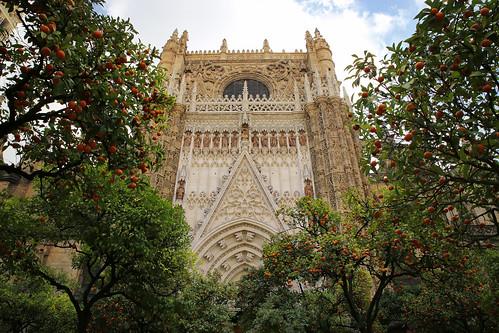 Patio de los Naranjos in Seville