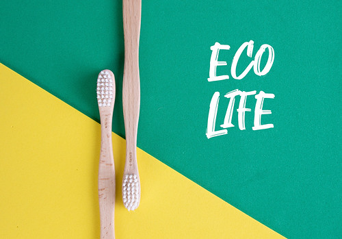 Wooden toothbrushes with Eco Life text on green and yellow background