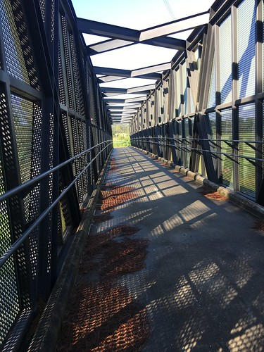 Cycling Eastlink Trail and Dandenong Creek Melbourne