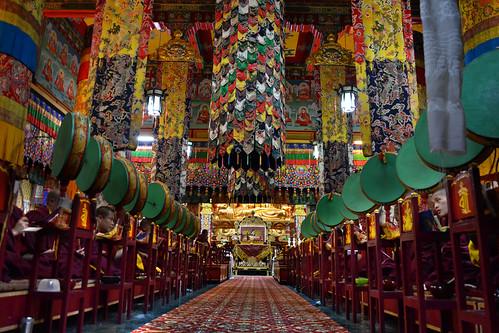 Ralong Monastery (New) : Borong, South Sikkim, Eastern Himalaya, India - II
