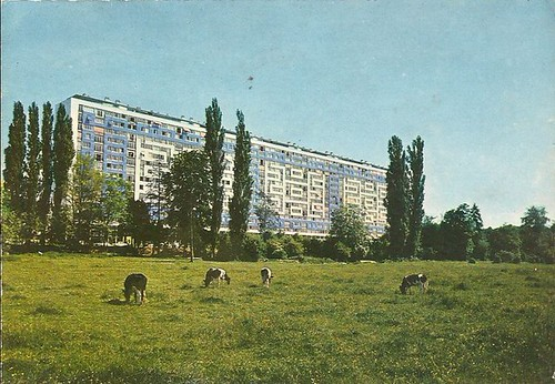 Grand Vaux (Savigny-sur-Orge)