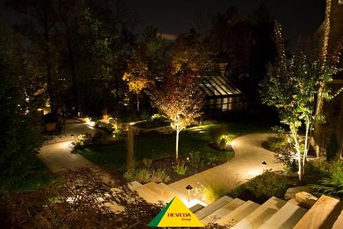 Ứng dụng chiếu sáng đèn LED pha trong trồng và xuất khẩu cây cảnh