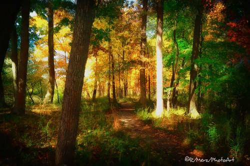 Fall River Walk 2