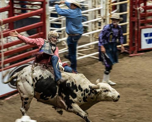 North Dakota State Fair 2019-5