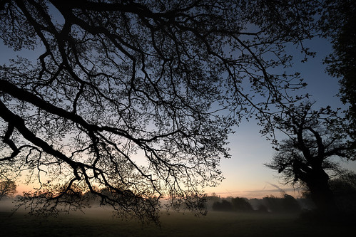 Through mist the morning gently formed  -  (Selected by GETTY IMAGES)
