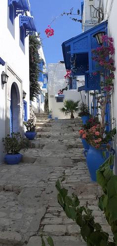 The Hidden Treasure Of Sidi Bou Said   5 💕💞